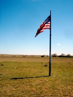Government Land Grants